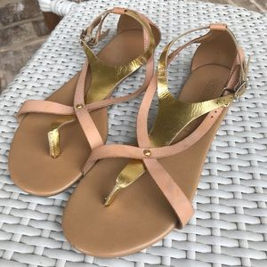 Seychelles Blush and Gold Gladiator Sandals